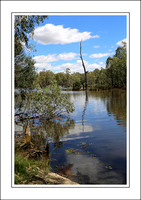 4 - 17.01.15 OVENS RIVER - W - (6)