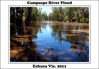 Campaspe River Flood - Echuca Vic. 2011