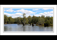 4 - 17.01.15 OVENS RIVER - W - (9)