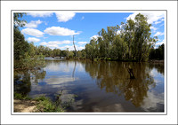 4 - 17.01.15 OVENS RIVER - W - (4)