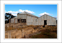 03.07.06 - W - P.COOTA WOOLSHED - (6)