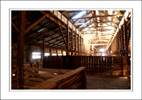 03.07.06 - W - P.COOTA WOOLSHED - (11)