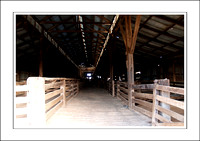 03.07.06 - W - P.COOTA WOOLSHED - (8)