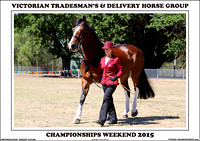 Victorian Tradesman's & Delivery Horse Championships 2015 - Day 1