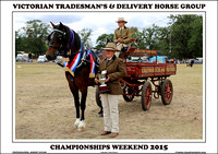 Victorian Tradesman's & Delivery Horse Championships 2015 - Day 2