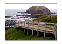 Trip To Philip Island - 2010