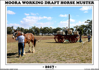 Moora Working Draft Horse Muster 2017 - Friday