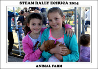 Steam Rally Echuca - 2014 - Animal Farm