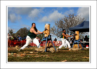 Steam Rally Echuca - 2014 - Best Picks & Prices