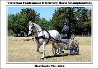 VictorianTradesman's & Delivery Harness - Heathcote 2014