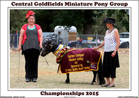 Central Goldfields Miniature Pony Championships 2015