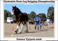 Clydesdale State Log Snigging Championship 2018